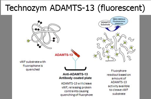 adamts13 fluorescent