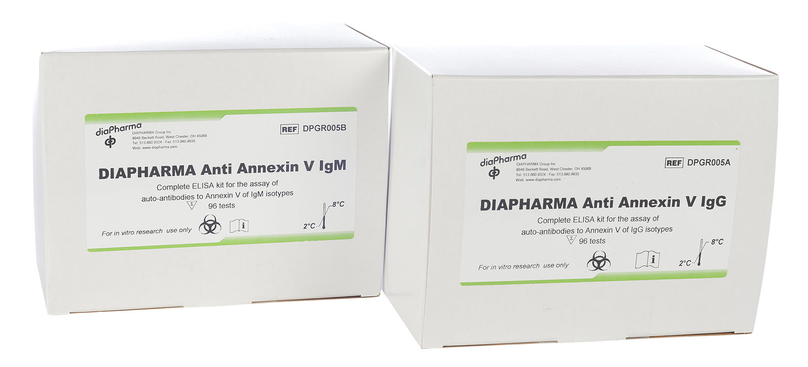 anti-annexin v igg igm ELISA assay test kit
