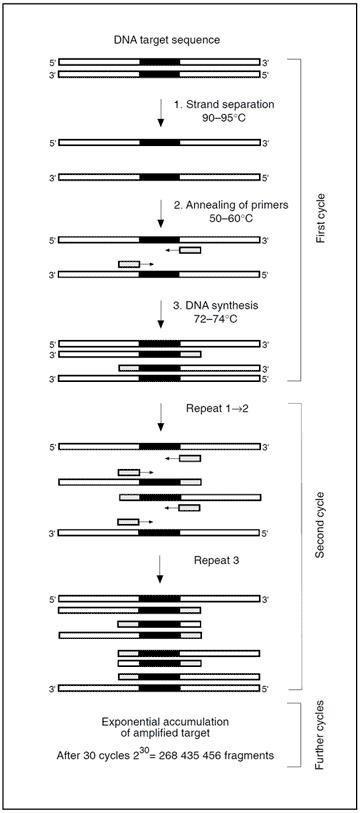 APC activated protein C resistance factor V leiden clotting assay test kit