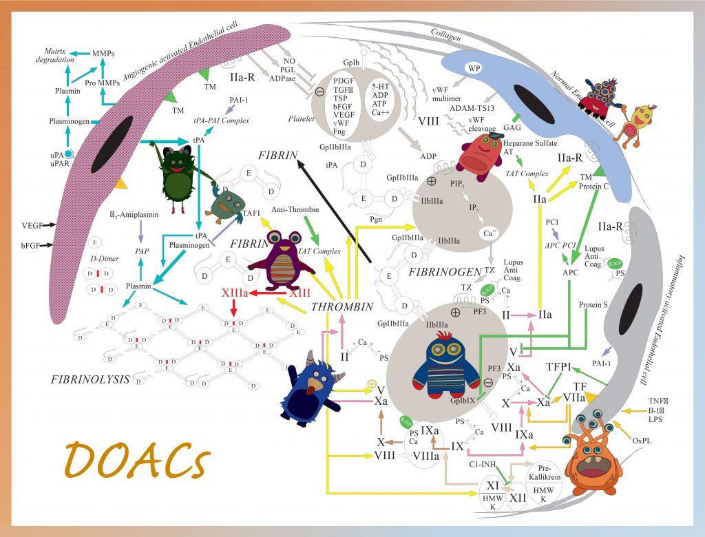 Direct Oral Anticoagulants (DOACs)