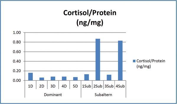 saliva cortisol assay measurement test kit