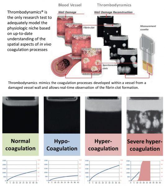Thrombodynamics