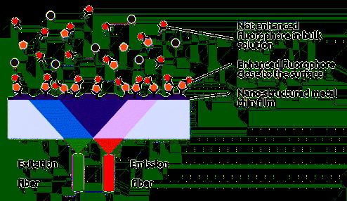 FluoBolt metal ELISA