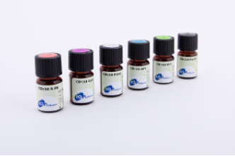 Anti-Hemoglobin S antibodies
